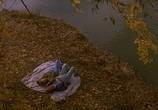 Сцена из фильма Стрекоза / Dragonfly (2002) Стрекоза сцена 3