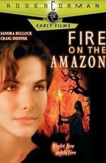 Постер к фильму Амазонка в огне