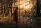 Кадр с фильма Жатва