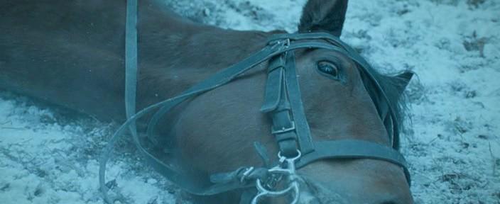 Дед мороз на колеснице